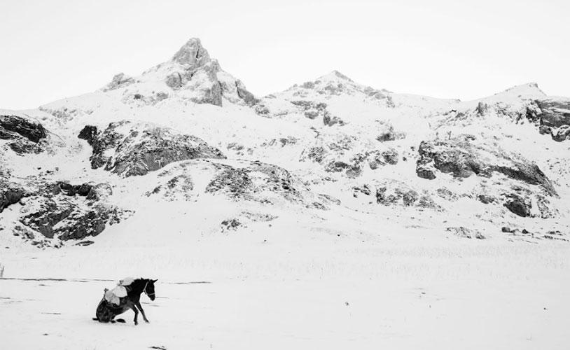 Whiteout © Frederik Buyckx | Le foto più belle del 2017