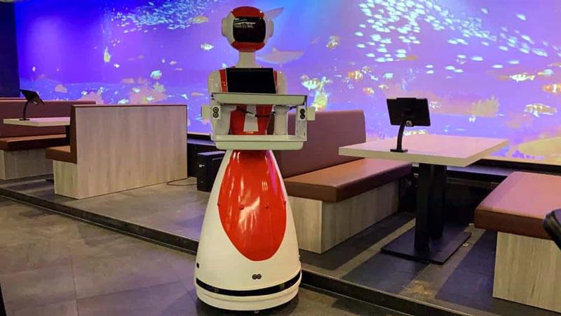 sushisun_robot_cameriere
